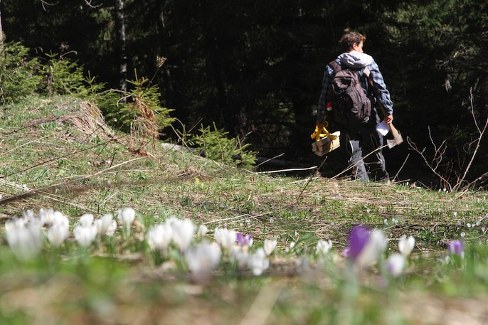 Im April profilierten die Verantwortlichen die geplante Freeride-Strecke für Mountainbiker. Pro Natura forderte daraufhin eine Überarbeitung des Projekts.