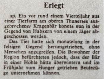 «Der Bund» berichtete am 15. Oktober 1970 über den Abschuss des Kragenbären.
