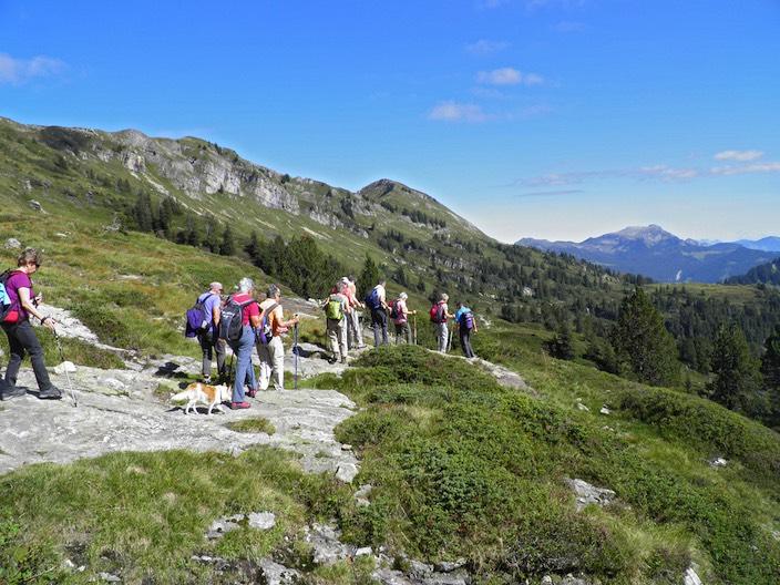 Für ihren Abstieg vom Niederhorn wählte die Senorenwandergruppe Brienz-Oberhasli den perfekten Tag
