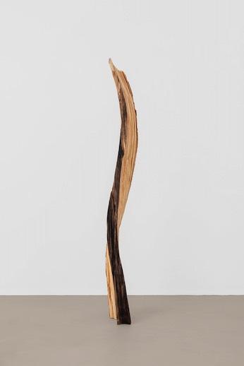 Scultura in legno di Marcus Flock.