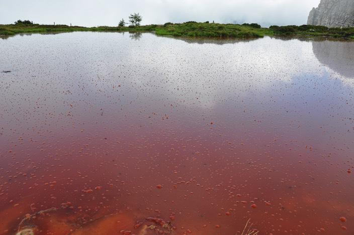 Der Hohseil-See ist plötzlich ganz rot – normalerweise wäre er bräunlich.