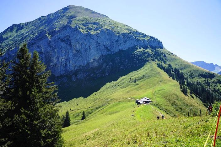 Die Alp Brunni der Burgergemeinde Leissigen unterhalb vom Morgenberghorn umfasst 30 Hektaren.