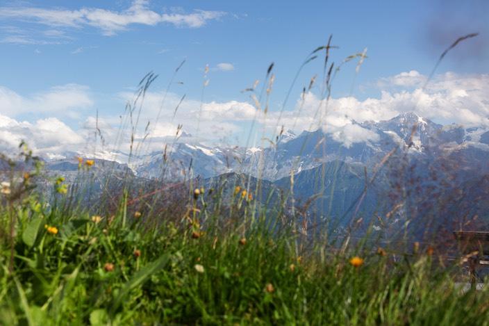 Das Alpenpanorama zieht insbesondere Schweizer Gäste an.